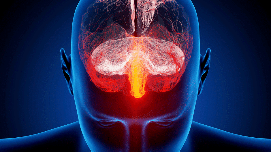 autonomes Nervensystem